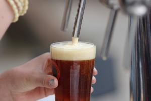 La Festeta de la Cervesa de Cal Rosal potencia l'apartat musical per consolidar-se en el calendari berguedà