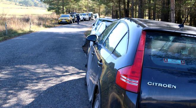 massificacio-cotxes-bosc-ACN
