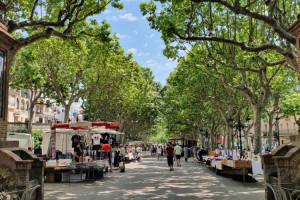 El govern de Berga preveu autoritzar el mercat setmanal els dilluns, quan no es pugui fer els dissabtes