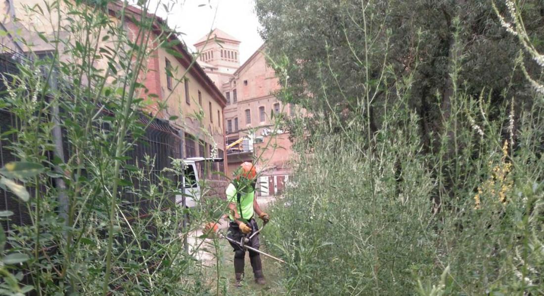 jardiners-taller-coloma-puigreig