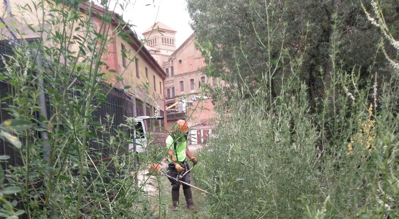 El Taller Coloma netejarà els camins de la ruta de les colònies a Puig-reig