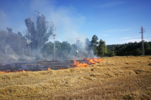 Crema una hectàrea de bosc, matolls i conreus a Montclar, a tocar de Viver i Serrateix