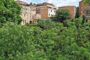 L'actual zona nord de la Rasa dels Molins: brutícia, deixadesa i abandonament al cor de Berga